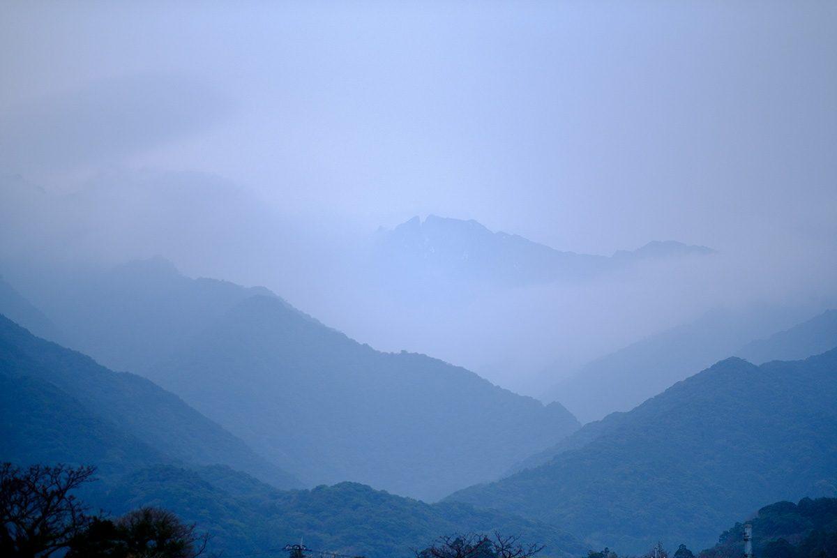 Yakushima Mountains